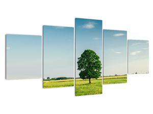 Obraz stromu na louce (V021171V150805PCS)