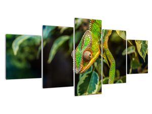 Obraz chameleona (V021236V150805PCS)