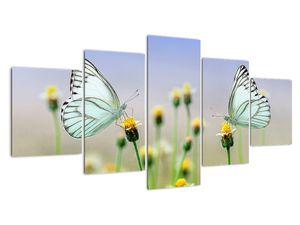 Obraz motýlů na květině (V021248V150805PCS)