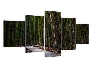 Obraz - Medzi bambusy (V021324V150805PCS)