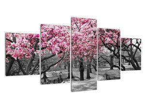 Slika dreves magnolije (V021344V150805PCS)