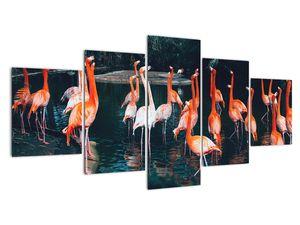 Obraz stáda plameňáků (V021626V150805PCS)