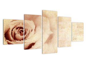 Obraz - Květ růže pro zamilované (V021945V150805PCS)