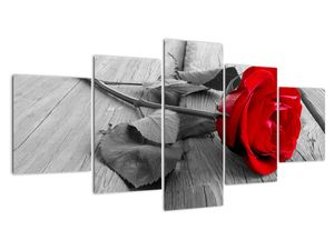 Slika rdeče vrtnice (V022288V150805PCS)
