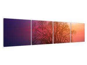 Tablou pomilor în ceață (V020088V16040)