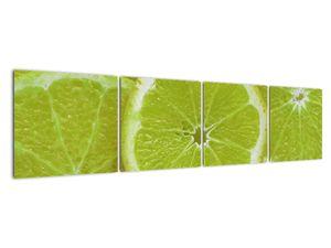 Kép - citrom szelet (V020164V16040)
