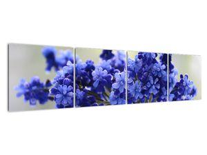 Obraz kytice modrých květů (V020175V16040)