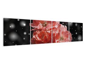 Obraz růžové květiny (V020471V16040)