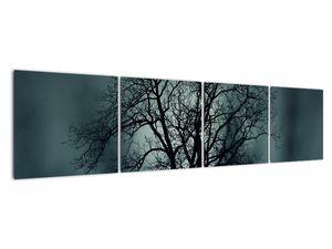Obraz stromu v zatmění (V020675V16040)