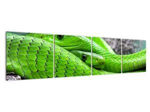 Obraz zelených hadů (V020689V16040)