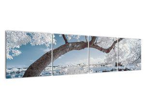 Obraz zasněženého stromu u vody (V020718V16040)