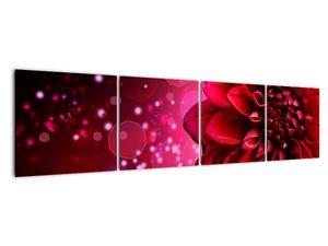 Obraz červené kvety (V020807V16040)