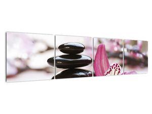 Obraz masážních kamenů a orchidee (V020910V16040)