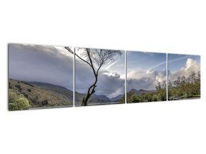 Obraz řeky se stromem (V020917V16040)