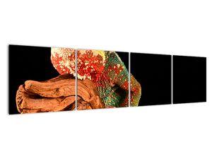 Obraz chameleona na větvi (V021125V16040)