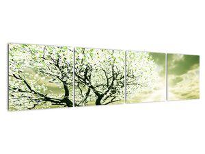 Obraz stromu na lúke (V021282V16040)