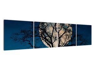 Obaz stromu s úplňkem (V021355V16040)