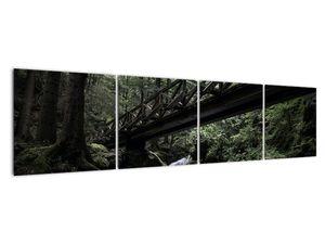 Obraz z černého lesa (V021686V16040)