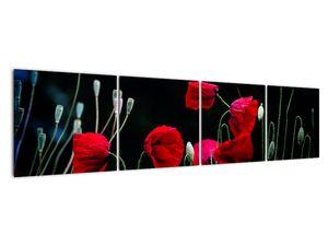 Obraz - Tanec vlčích máků (V021725V16040)
