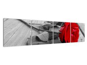 Slika crvene ruže (V022288V16040)