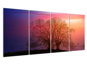 Tablou pomilor în ceață (V020088V16080)