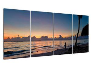 Kép egy nőről a tengerparton (V020204V16080)