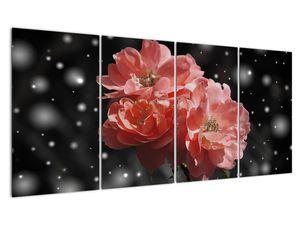 Obraz růžové květiny (V020471V16080)