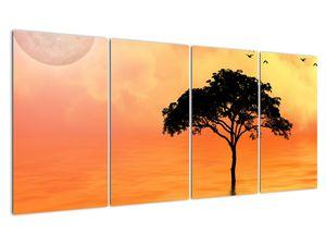 Obraz stromu v západu slunce (V020480V16080)