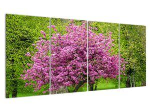 Obraz rozkvetlého stromu na louce (V020654V16080)