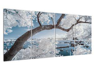 Obraz zasněženého stromu u vody (V020718V16080)