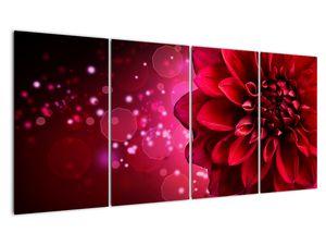 Obraz červené kvety (V020807V16080)