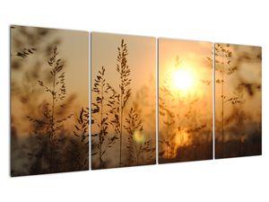 Obraz východu slunce (V020870V16080)
