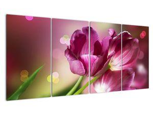 Obraz růžových tulipánů (V020887V16080)