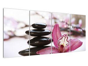 Obraz masážních kamenů a orchidee (V020910V16080)