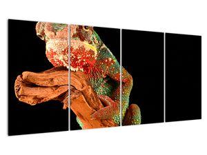 Obraz chameleona na větvi (V021125V16080)