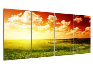 Obraz lúky so žiariacim slnkom (V021174V16080)