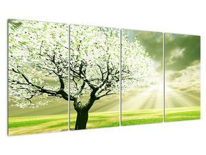 Obraz stromu na lúke (V021282V16080)