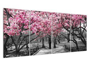 Obraz stromů Magnolíie (V021344V16080)