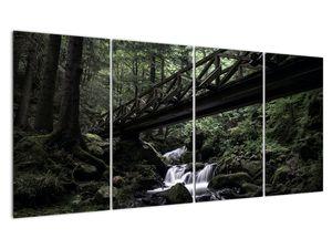Obraz z černého lesa (V021686V16080)