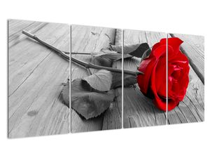 Slika rdeče vrtnice (V022288V16080)