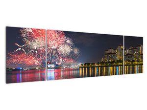 Tablou cu artificii in Singapur (V020035V17050)