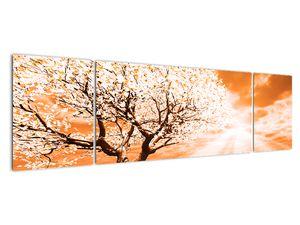 Oranžový obraz stromu (V020095V17050)
