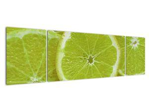 Kép - citrom szelet (V020164V17050)
