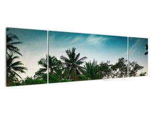 Tablou - palmierii (V020239V17050)