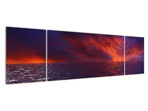 Obraz moře s ptáky (V020351V17050)