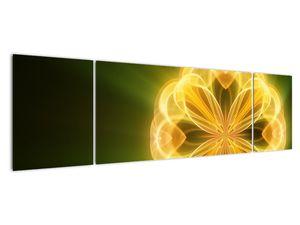 Obraz žluté květiny (V020451V17050)