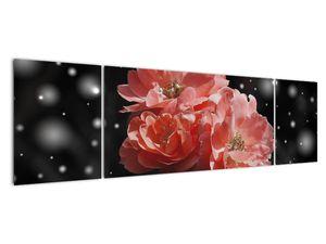 Obraz růžové květiny (V020471V17050)