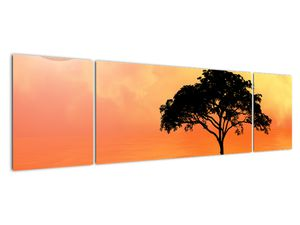 Obraz stromu v západu slunce (V020480V17050)