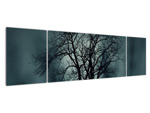 Obraz stromu v zatmění (V020675V17050)