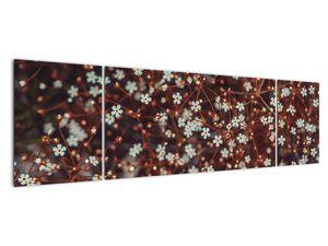 Obraz květiny Pomněnka lesní (V020811V17050)